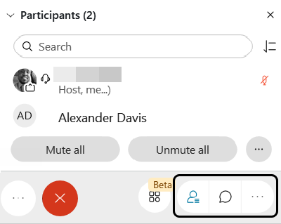 Screenshot: Participant and Chat icons