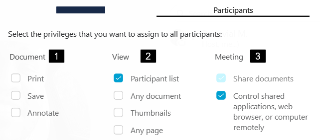 Screenshot: Documvent, View and Meeting Privileges