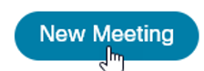 Image of New Meeting button.